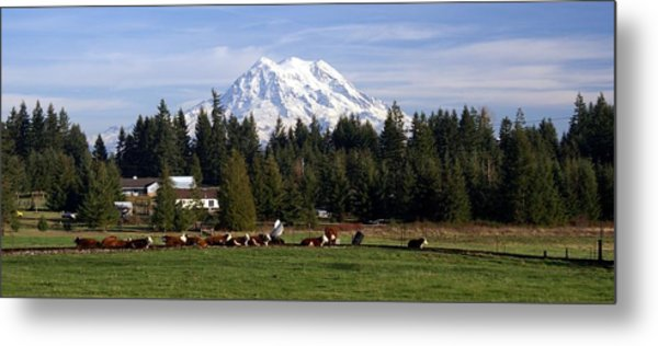 Watching Over The Herd Metal Print