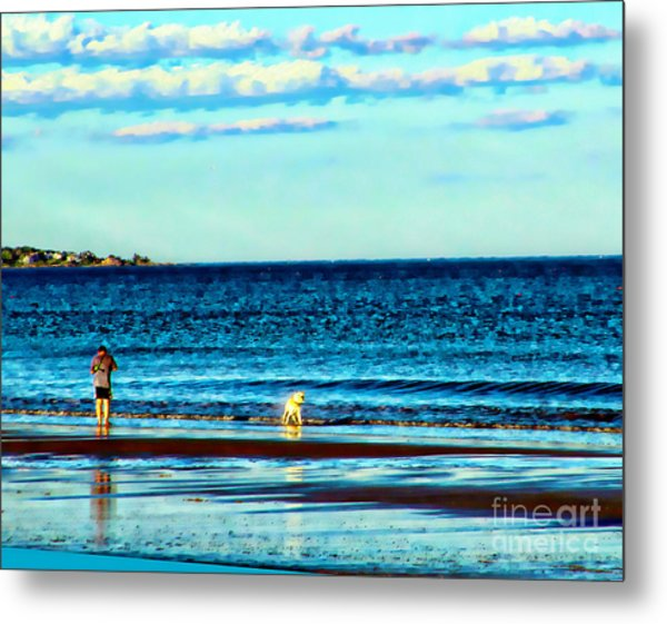 Water Dog From Dog Park Beach Series Metal Print