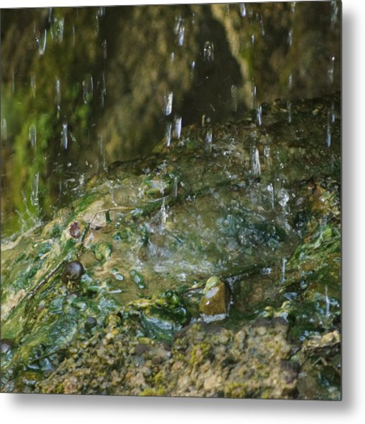 Water Droplets Metal Print by Joseph Shaffer