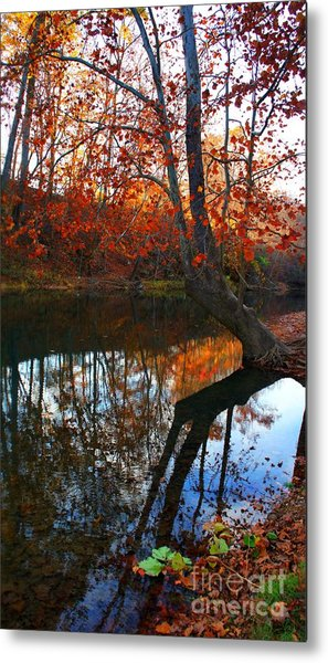 Water In Fall Metal Print