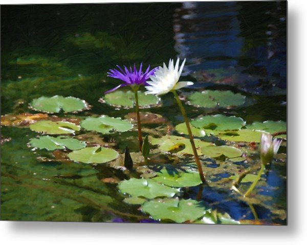 Waterlilies 1 Metal Print