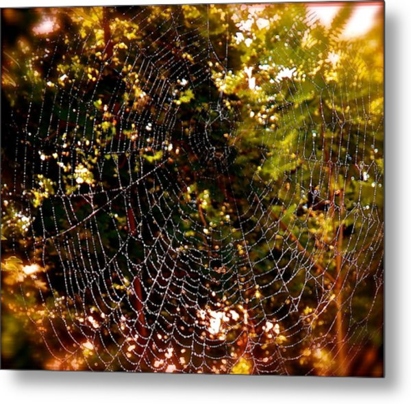 Web Illusion Metal Print by Gloria Warren