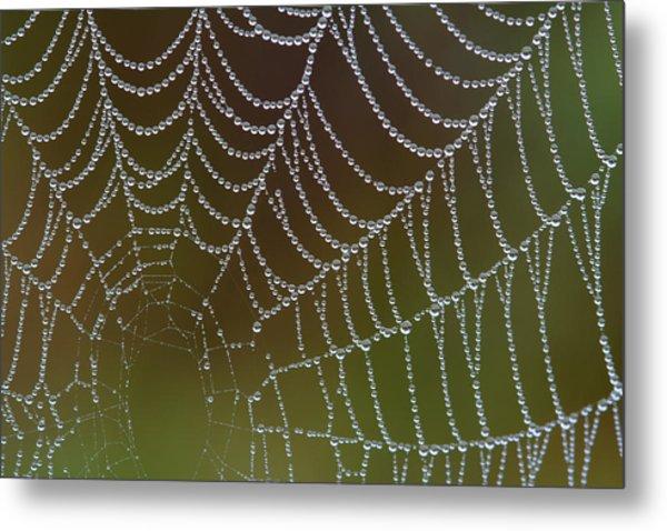 Web With Dew Metal Print