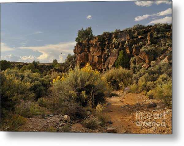 Metal Print featuring the photograph Westward Across The Mesa by Ron Cline