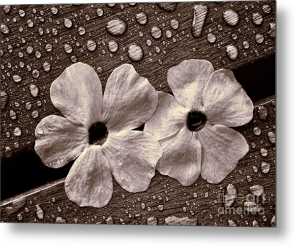 Wet Flowers And Wet Table Metal Print