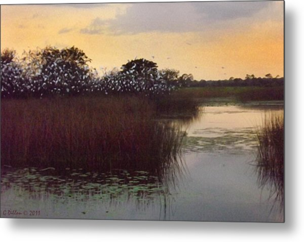 Metal Print featuring the digital art Wetland Colony by Grace Dillon
