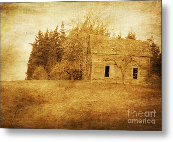 What Has History Taught Metal Print by Terrie Taylor