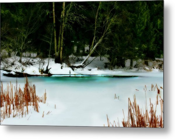 Whisper Metal Print by Donna Duckworth