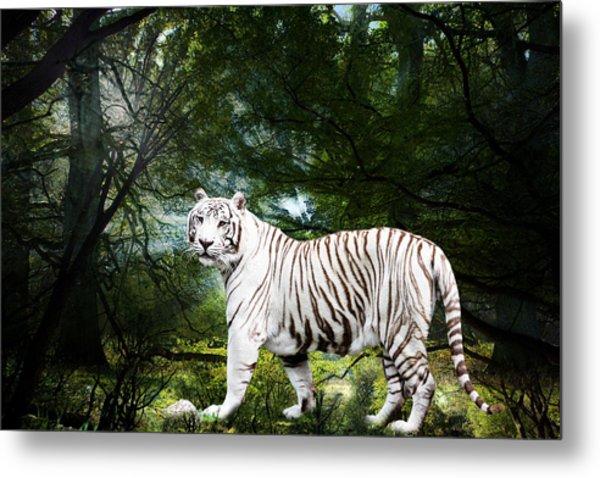 White Bengal Metal Print