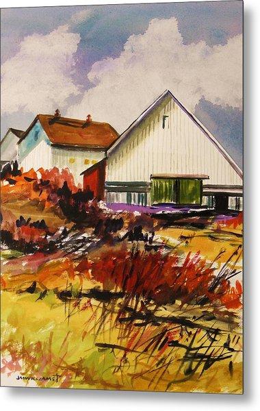 White Farm-spring Metal Print by John Williams