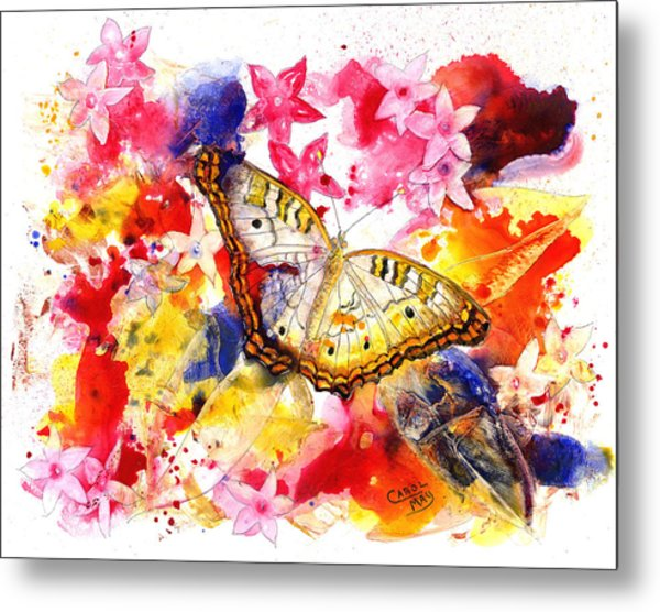 White Peacock Butterfly With Pentas Metal Print by Art by Carol May
