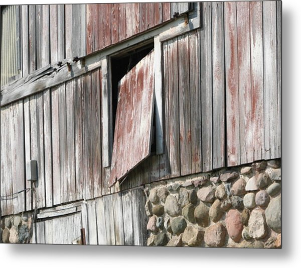 Who Let The Cow Out Metal Print by Michelle Shull
