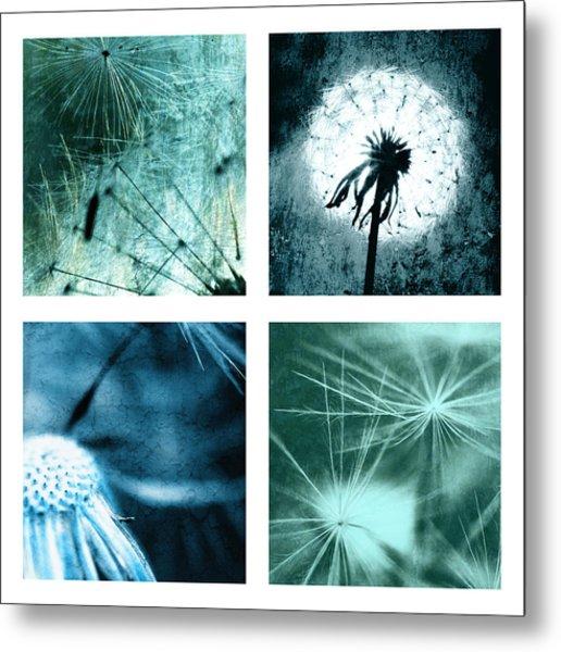 Wild Flower Dandelion Metal Print by Falko Follert
