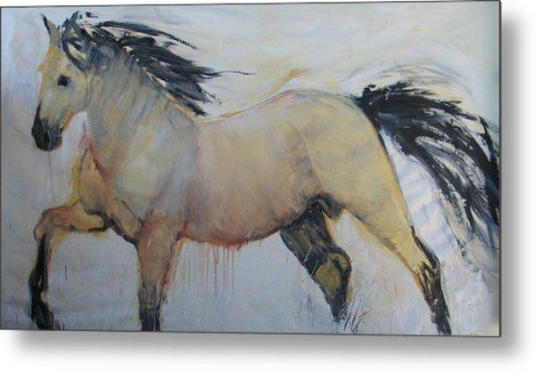 Wild Horse 1 2012 Metal Print