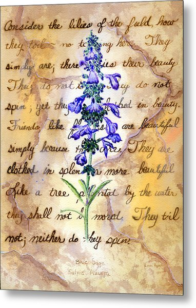 Wild Sage Metal Print by Linda Pope