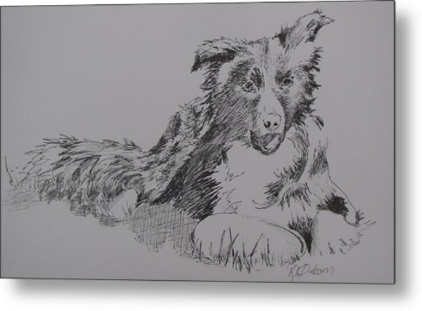 Willow And Frisbee Metal Print by Ramona Kraemer-Dobson