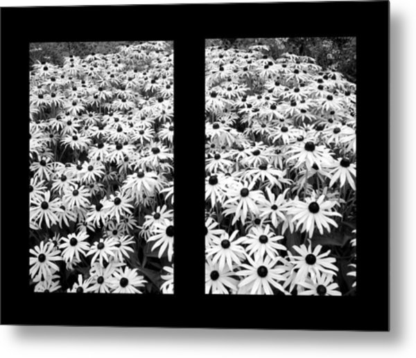 Window To Cheer Metal Print