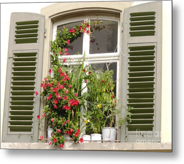 Window With Flower Pots Metal Print