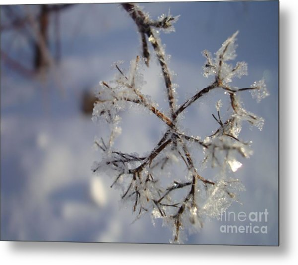 Winter Crystals Metal Print