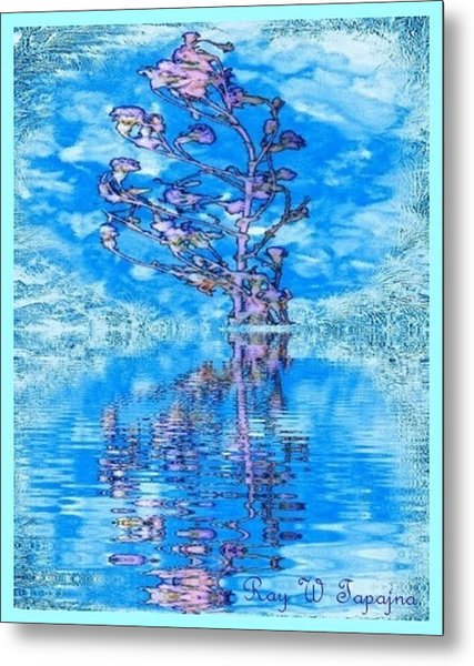 Winter Flowers For You Metal Print by Ray Tapajna