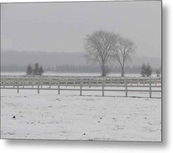 Winter Fog On The Paddocks Metal Print