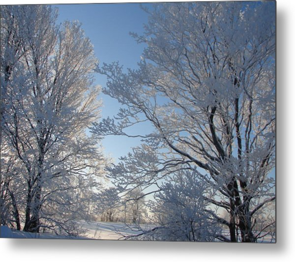 Winter Ice Metal Print