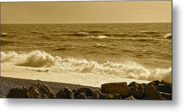 Winter In Sepia Metal Print by Karen Grist