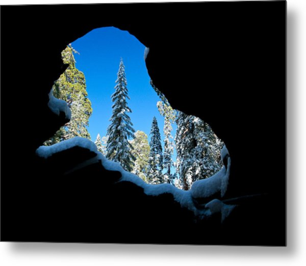 Winter Inside Out Metal Print