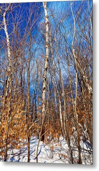 Winter Landscape I Metal Print