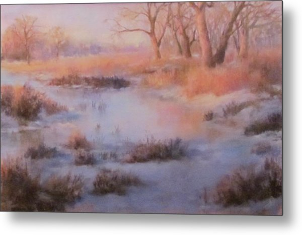 Winter Marsh Series- Fire And Ice Metal Print