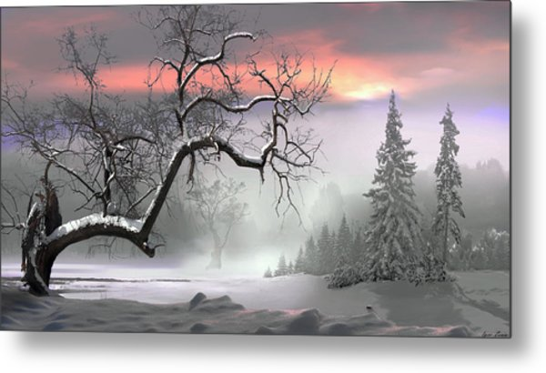 Winter Trees Metal Print by Igor Zenin