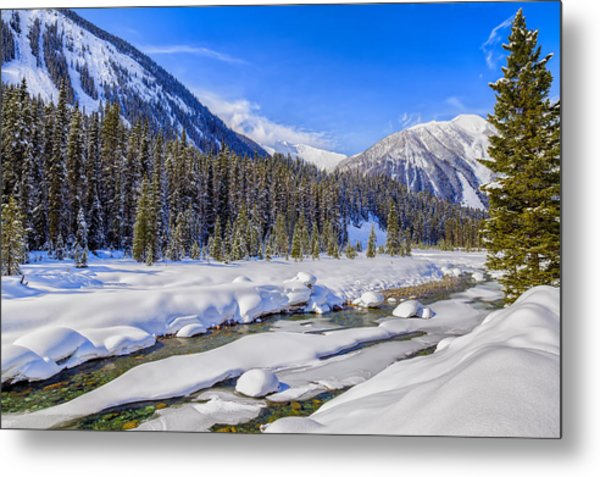 Metal Print featuring the photograph Wintery Numa Creek by David Buhler