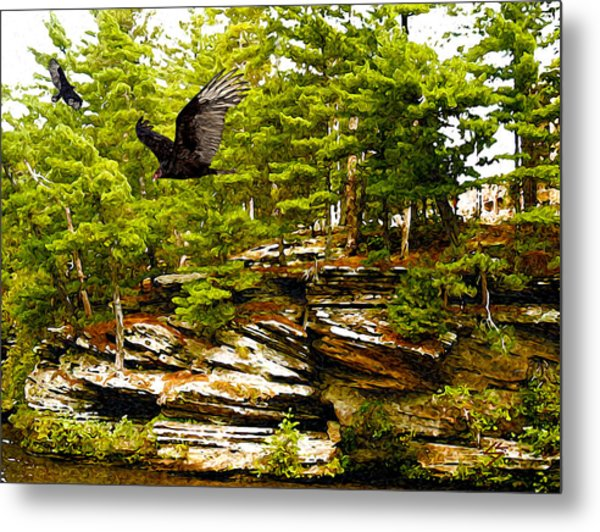 Wisconsin River Dwellers Metal Print