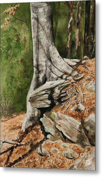Wishing Tree Metal Print by Carla Dabney