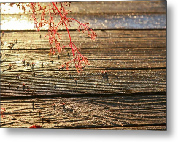 Wood Deck Red Sprig Metal Print