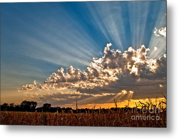 Wow Moment Metal Print