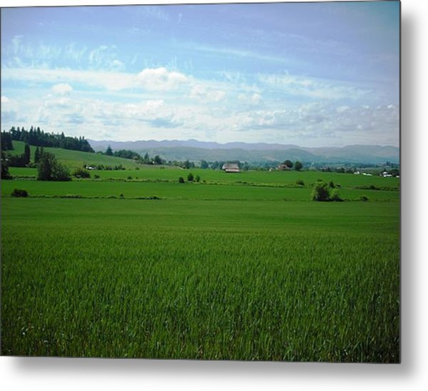 Yamhill Countryside Metal Print