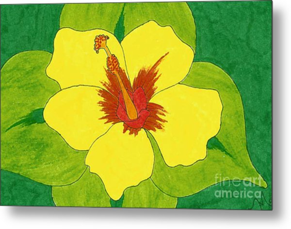 Yellow Hibiscus Drawing by Lindsay Mangham