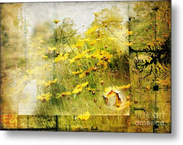 Yellow Wildflower Field Abstract Metal Print