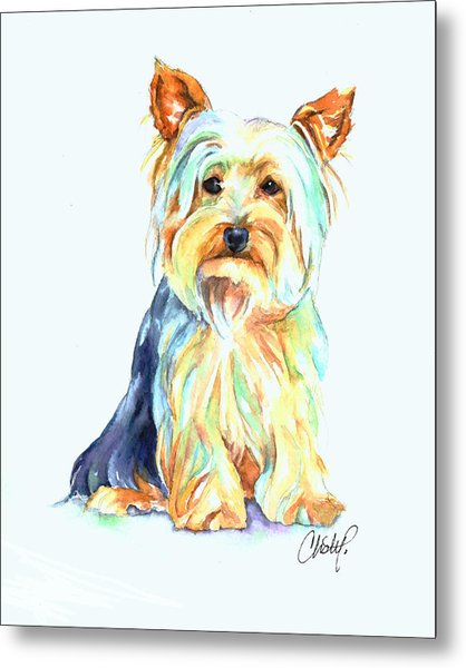 Yorkie Dog Portrait Metal Print