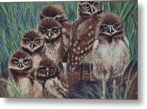 Young Burrowers Metal Print by Thomas Maynard