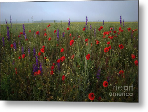 Young Princes Of The Field Metal Print