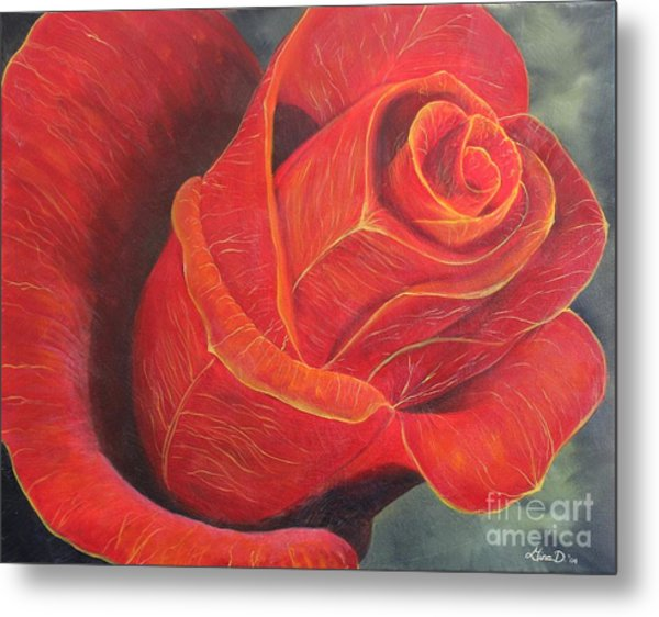 Young Rose Metal Print by Gina DeRuggiero
