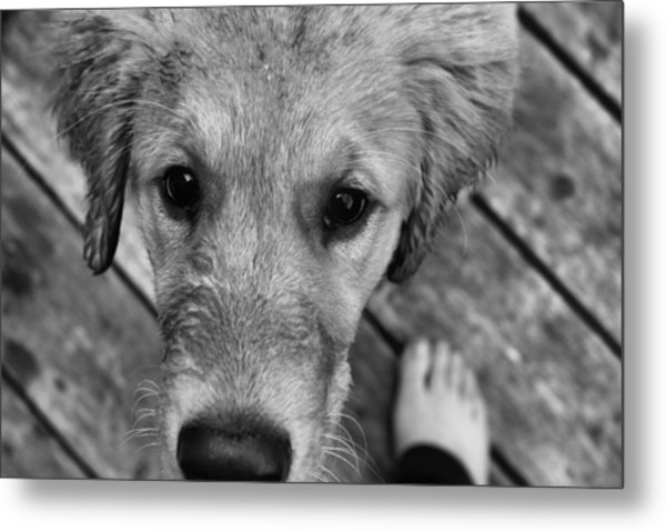 Yours Metal Print by Tami Rounsaville