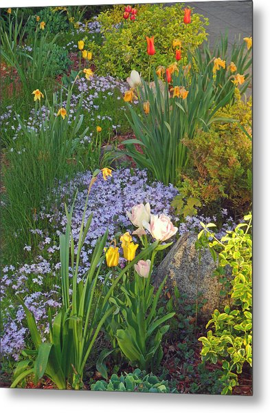 Zacks Garden - Hope Bay Campground Metal Print