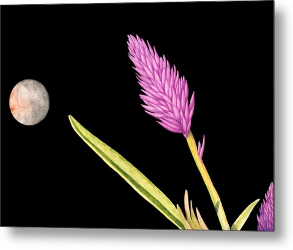 Zen Moon Metal Print by Norm Holmberg