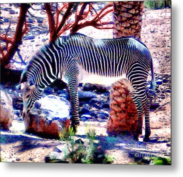 Zoo Patterns Metal Print