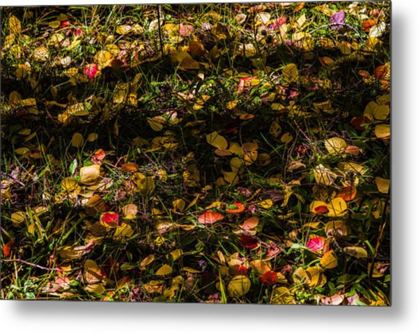 Autumn's Mosaic Metal Print