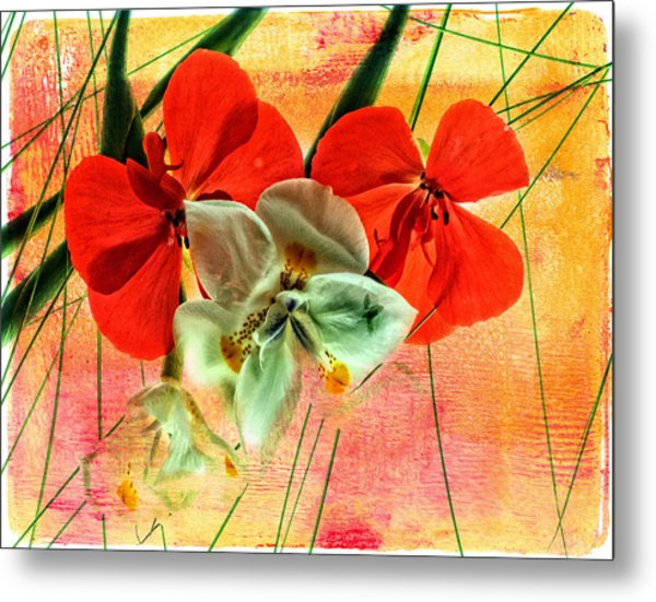 Bougainvillea And Paper White Metal Print