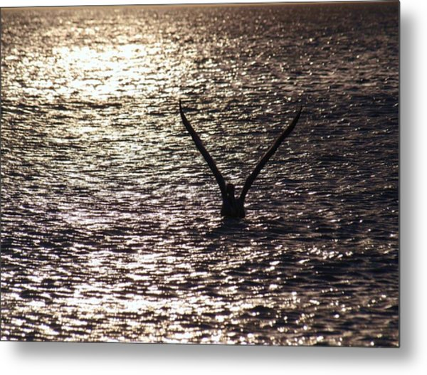 Dancing With The Wind On A Sparkling Water Metal Print